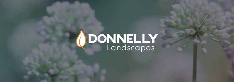 donnellylandscapes