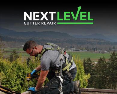 Next Level Gutter Repair