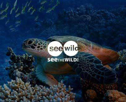 SEEtheWILD