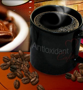 antioxidant-portfolio