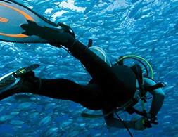 Divinglocker